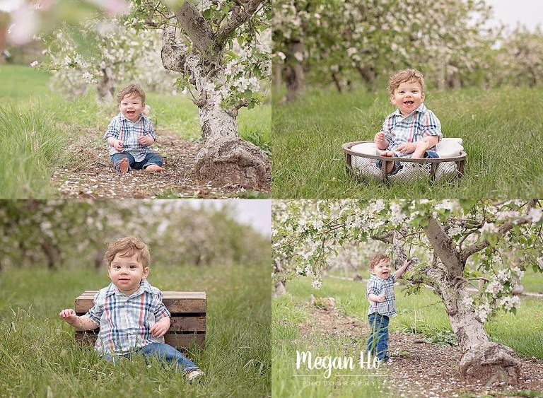 adorable little baby boy in apple orchard in new hampshire