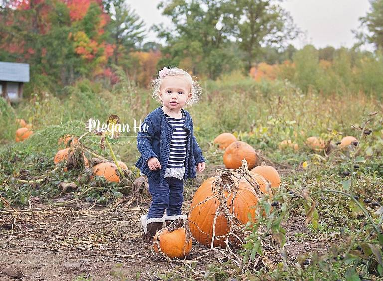 adorable one year girl standing amongst pumpkins in pumpkin patch