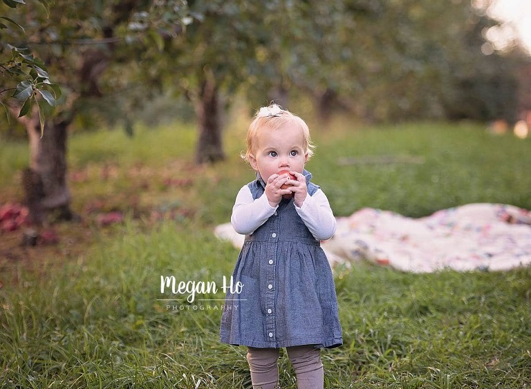 adorable one year session in fall apple orchard southern nh